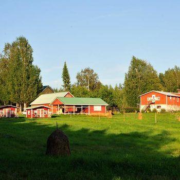 Bild från Bed & Breakfast Hepokatti, Hotell i Finland